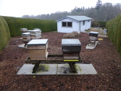 ADBKA apiary at Crathes Castle