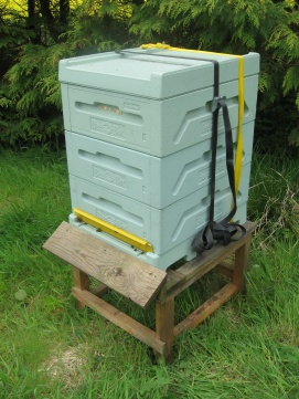 Bee box Langstroth / Dadant shallows