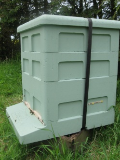 Large poly hive - Paynes