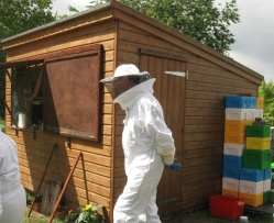 Grafting hut