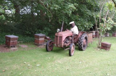 Sandy on tractor in his apiary